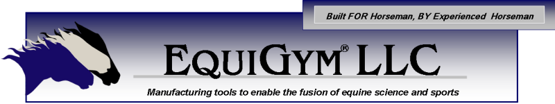 EquiGym - Manufacturing Tools to enable the fusion of equine science and sports